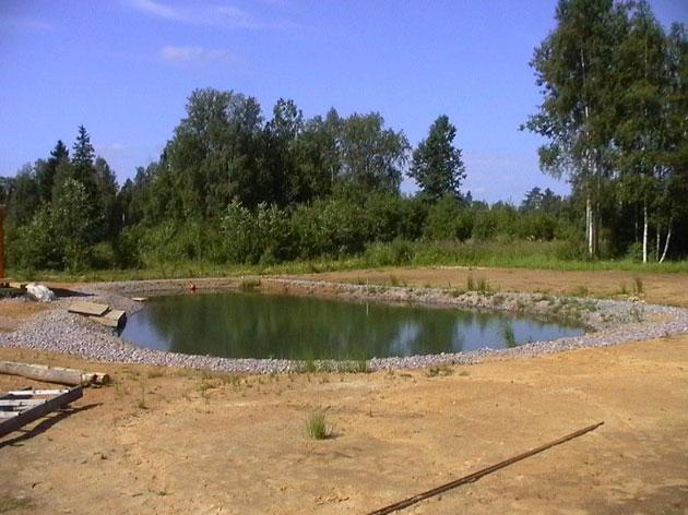 Самодельные пруды для разведения рыбы